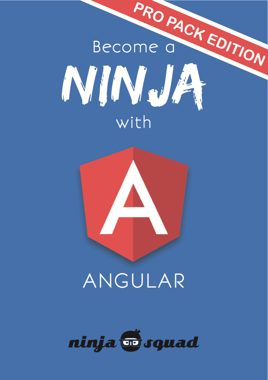 Become a ninja with Angular - the ebook